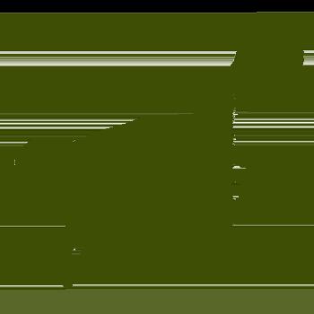 PIM Guanaco Icon