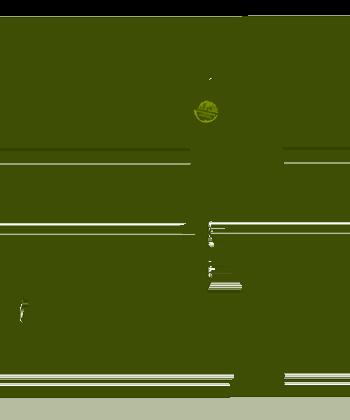 PIM Runner Icon