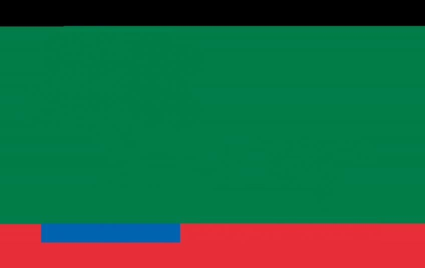 Logo Conaf