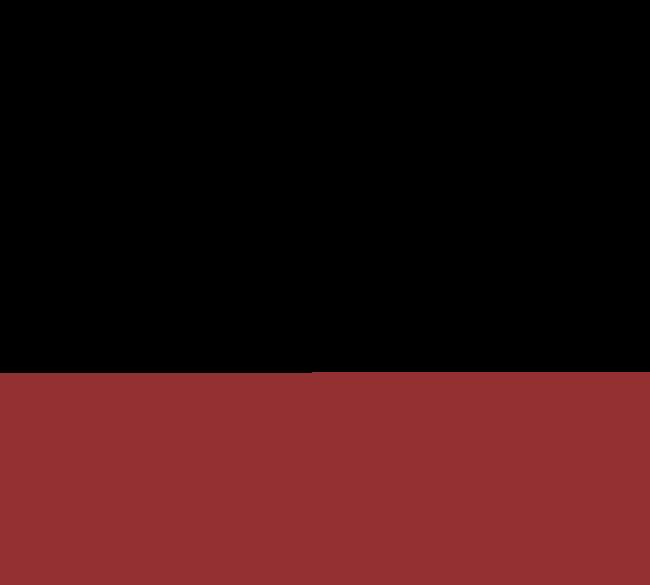 Logo Patagonia Blend
